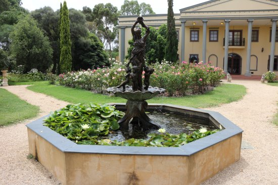 Lyndoch, Australia: beautiful garden