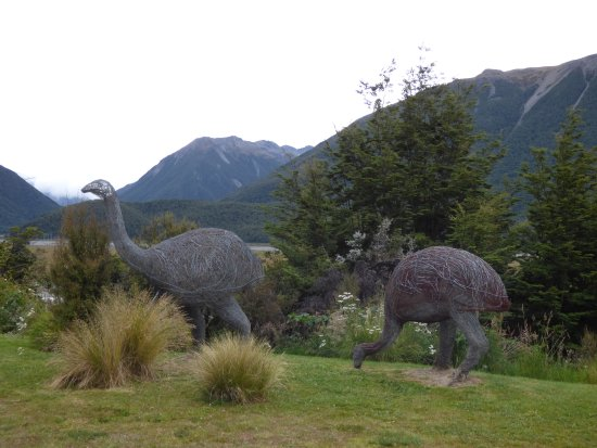 Arthur's Pass National Park, Nueva Zelanda: Moas on the back lawn
