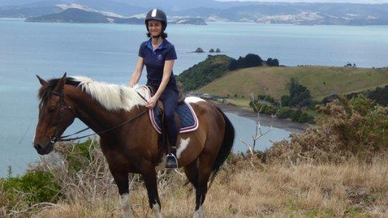 Waiheke Island, New Zealand: Waiheke Horse Tours