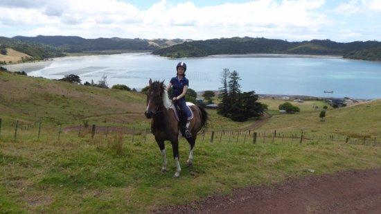 Ilha Waiheke, Nova Zelândia: Waiheke Tours