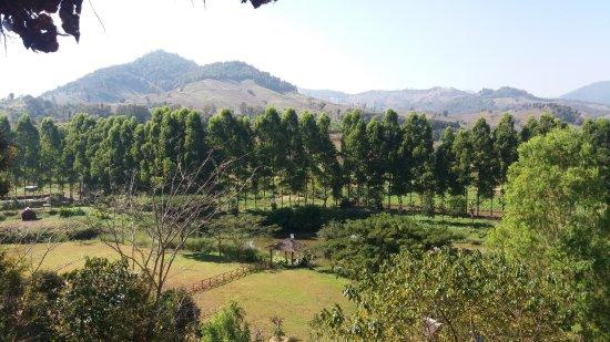 Phufatara Resort: View from the Restaurant