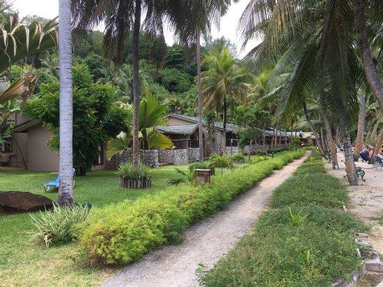 Anse Bois de Rose, Seychelles: Coco de Mer - Black Parrot Suites