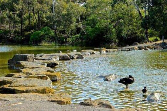 Newport Lakes Reserve
