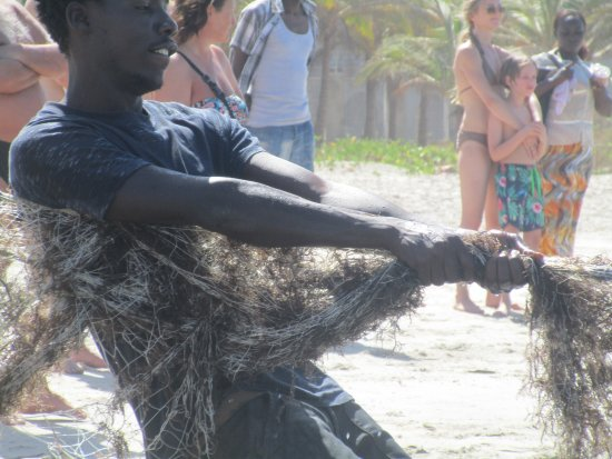 Kotu Beach: All hands to the nets.