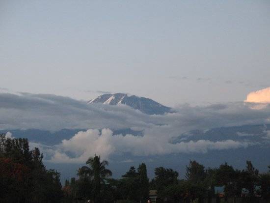 Twiga Home: view on Kilimanjaro just across the street