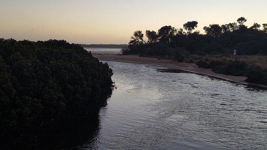 Screw Creek Nature Walk: Screw creek estuary