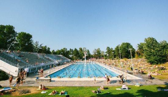 The Swimming Stadium