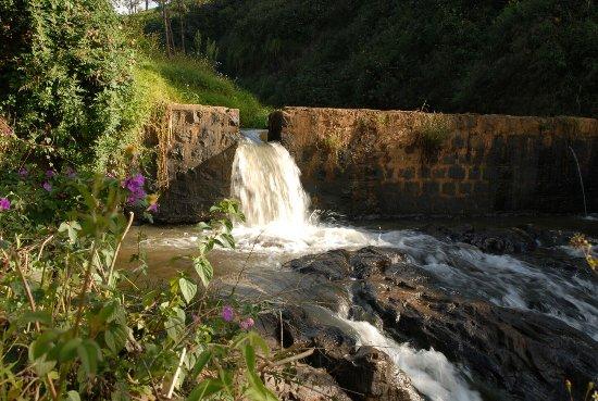 Rustling River Homestay
