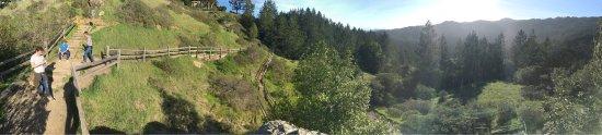 Mill Valley, CA: photo3.jpg