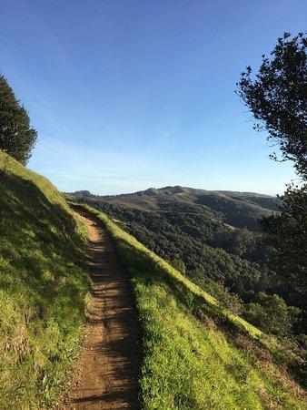 Mill Valley, CA: photo4.jpg