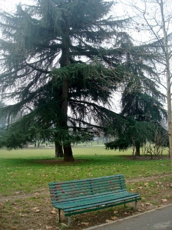 Parco Alessandrina Ravizza