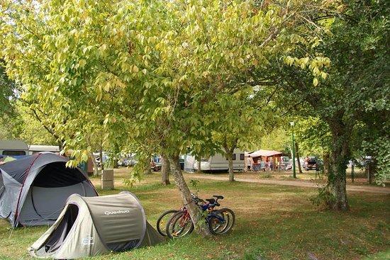 Aureilhan, France: Espaces campings spacieux et ombragés