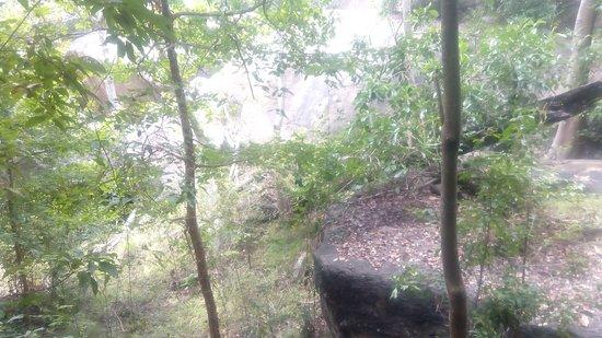 Ampara, Sri Lanka: IMG_20170213_120754_large.jpg
