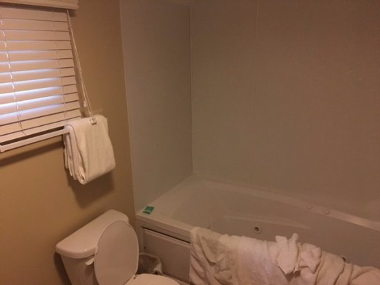 Shawnee on Delaware, PA: Master bath with whirlpool tub.