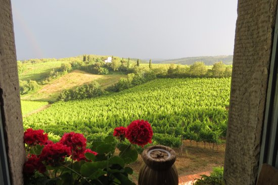Borgo Argenina: View from The Suite