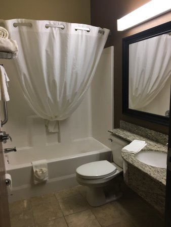 Microtel Inn & Suites by Wyndham Kalamazoo: Spotless bathroom...