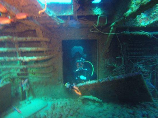 Blue Odyssey Diving: photo9.jpg
