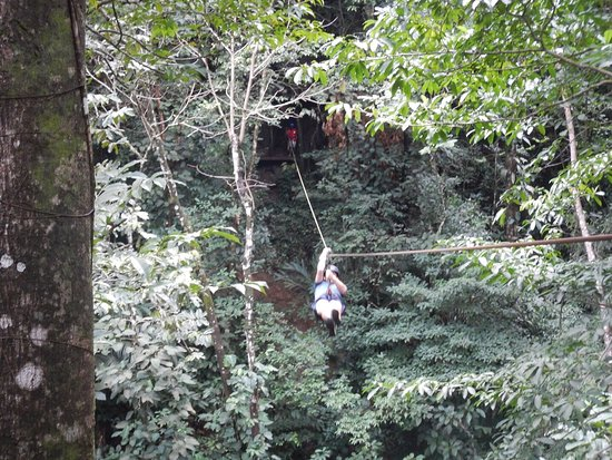 Jungle River Lodge: Rafting and canopy