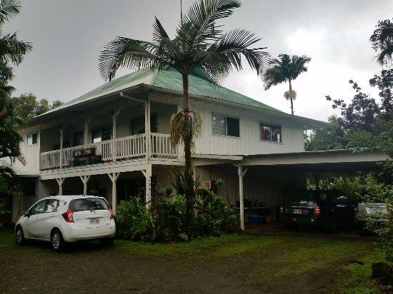 Lava Tree Tropic Inn Photo