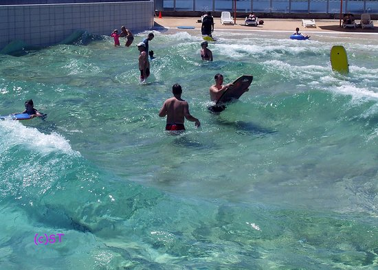 Wave Lagoon: Fun for the family