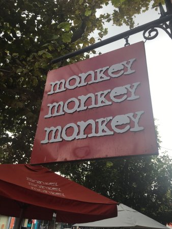 3 Monkeys Cafe: photo1.jpg