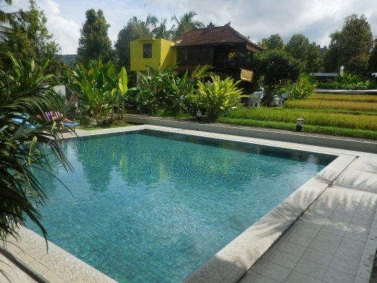 Munduk, Indonésia: piscine