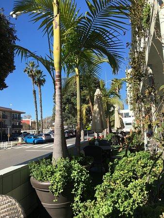 Bayside Hotel: photo3.jpg