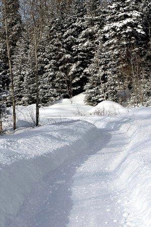 Riviere-Rouge, Canada : Randonnée dans un sentier magnifique - Hiking in a beautiful trail