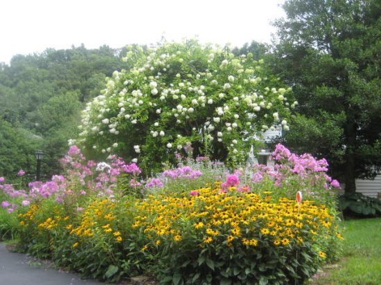 Lovill House Inn: 18 Perennial flower gardens with stream and waterfall.  Come and relax.