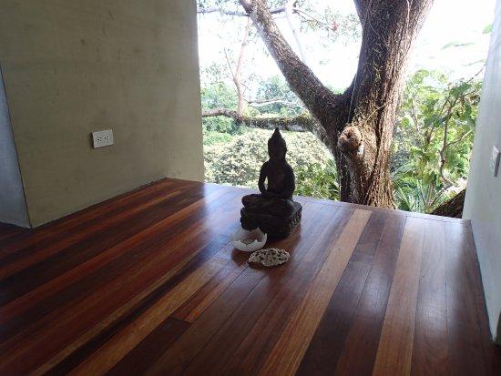 Pavones, Costa Rica: Yoga Studio