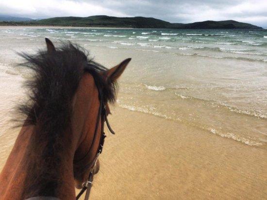 Dunfanaghy, Irlanda: Killahoey beach