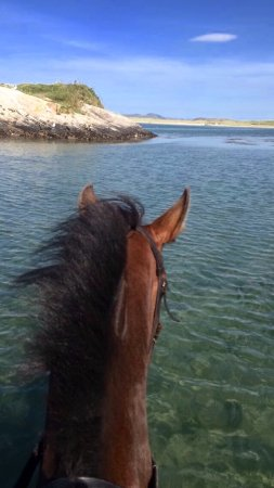 Dunfanaghy, Irlanda: The backstrand