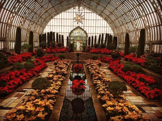 Como Park Zoo & Conservatory: Holiday poinsettia display