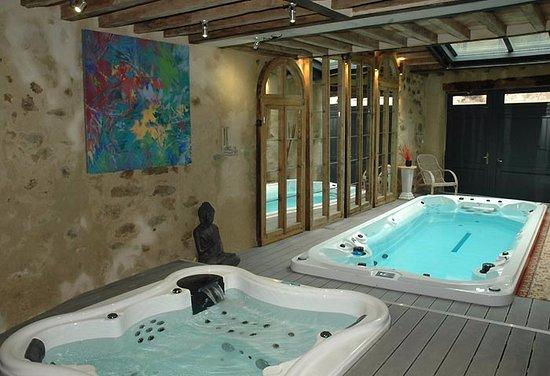 Boulbon, França: spa et piscine a contre courant le top .