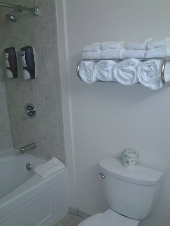 Chicago South Loop Hotel: Clean well stock towels.