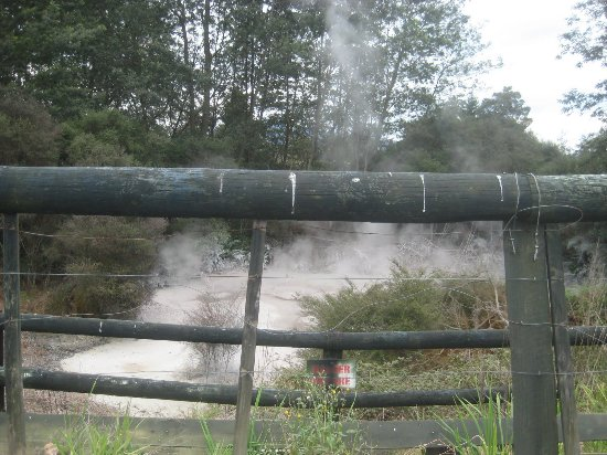Cruise Tauranga: mystische heiße Quellen ( Tauranga )