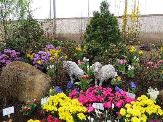 Adams Fairacre Farms: Garden Show