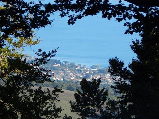 Bassano Romano, Ιταλία: uno scorcio di panorama sul lago di Bracciano da uno dei tanti sentieri della faggeta bassanese