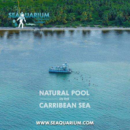 Seaquarium Punta Cana : Enjoy an incredible Natural Pool