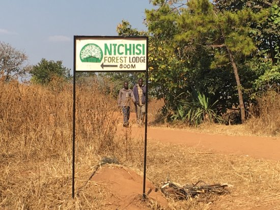 Ntchisi Forest Lodge: The best experience adventure ever in Malawi
