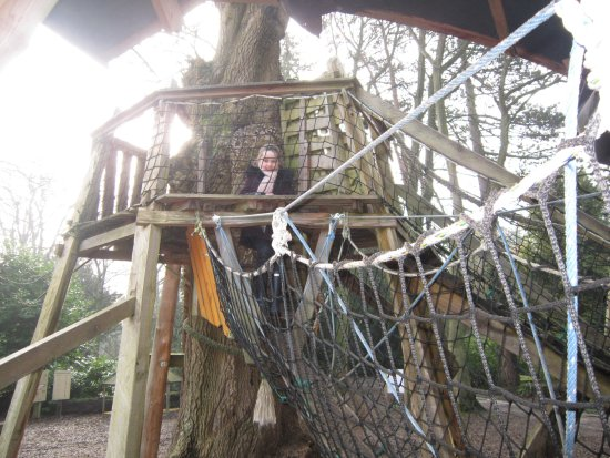 Bedale, UK: amazing rustic adventure playground