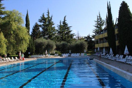 Bar de la piscine bild von hotel palme suite garda for Palme de piscine