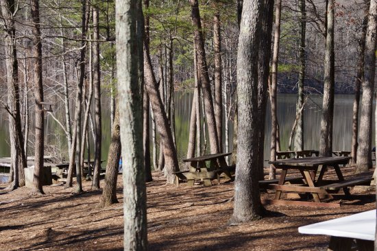 Madison County Nature Trail-Green Mountain: Nice Lakeside Picnic Area with Pavilion