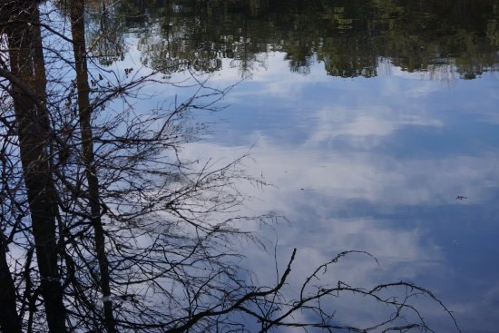 Madison County Nature Trail-Green Mountain: Sky and Trees Reflected in Still Lake