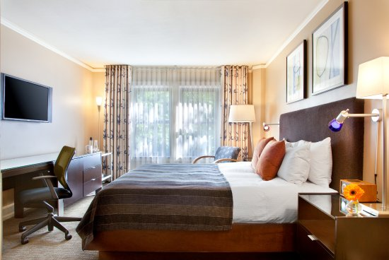 Hotel Andra: Andra Room with 250 square feet queen or 2 queen beds
