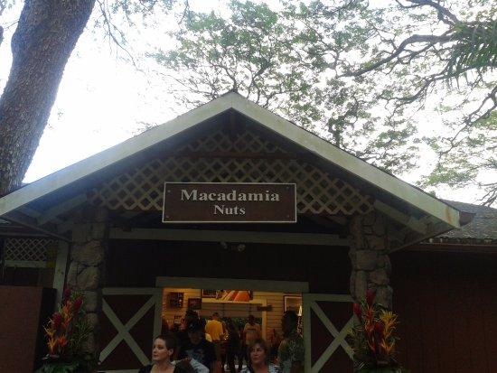 Kaneohe, Χαβάη: entrata