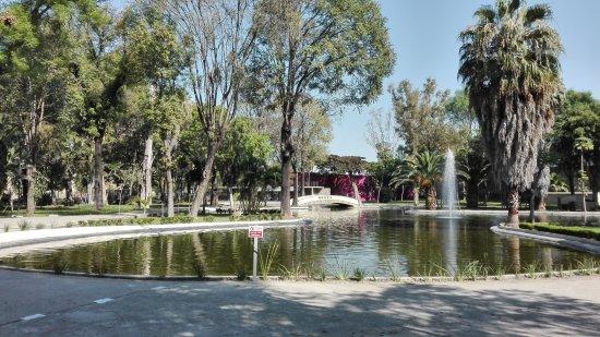 Parque Agua Azul: Estanque.