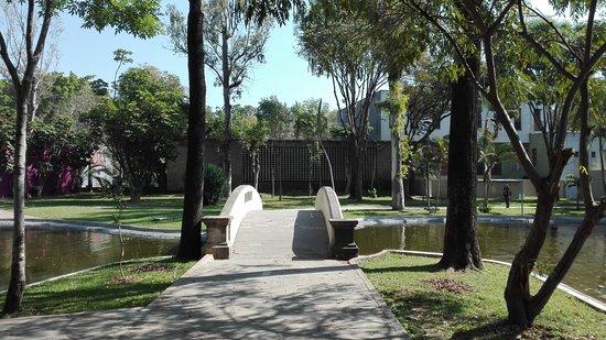 Parque Agua Azul: Buenas vistas.