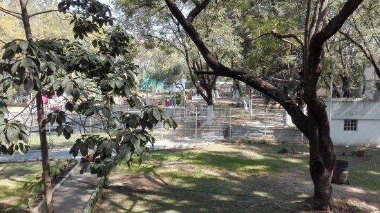Parque Agua Azul: Área de niños, cruzando el puente.