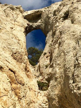 Montagne Sainte-Victoire : photo2.jpg